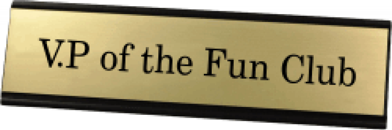 VP of the Fun Club Funny Name Plate
